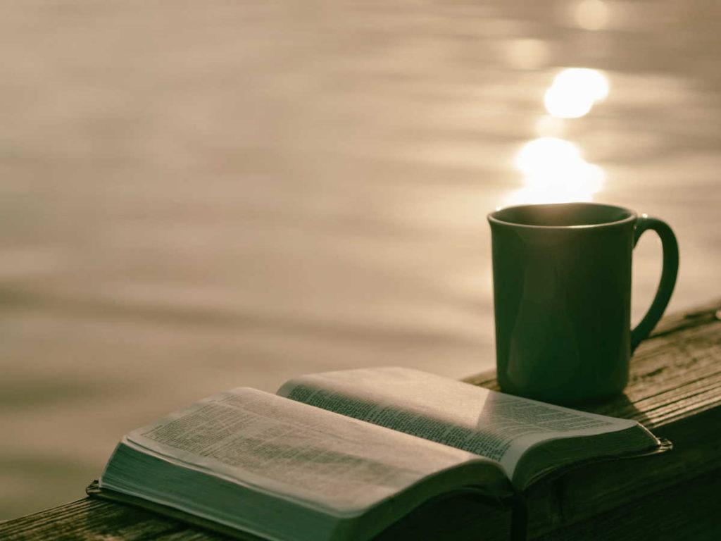 Buch statt Mietvertrag lesen