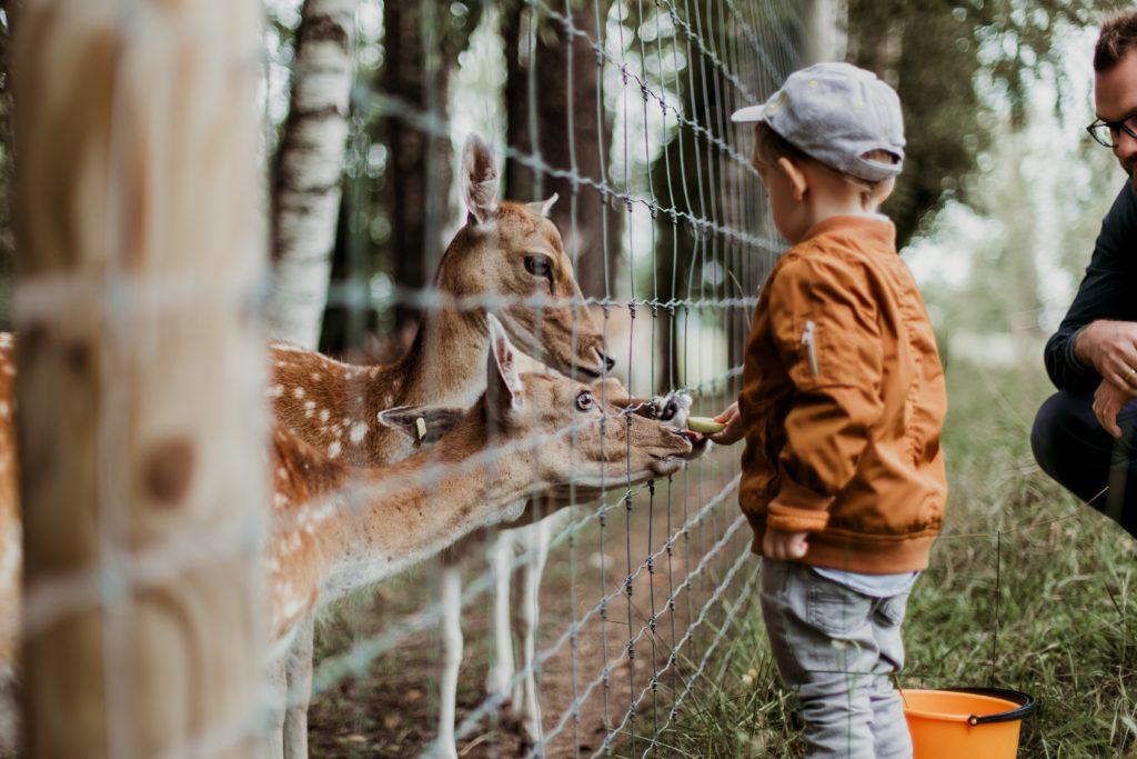 Zoobesuch statt Wohnungsbesichtigung